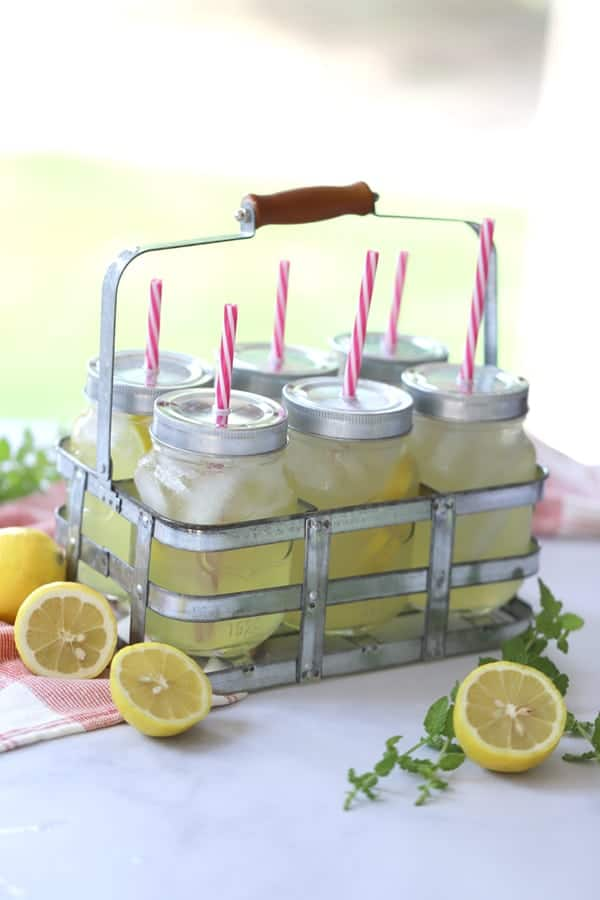 Mint lemonade in a drink carrier from homes and gardens collection at walmart with red and white swirl plastic straws