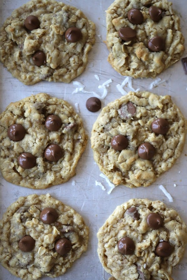 soft and chewy oatmeal coconut chocolate chip cookie