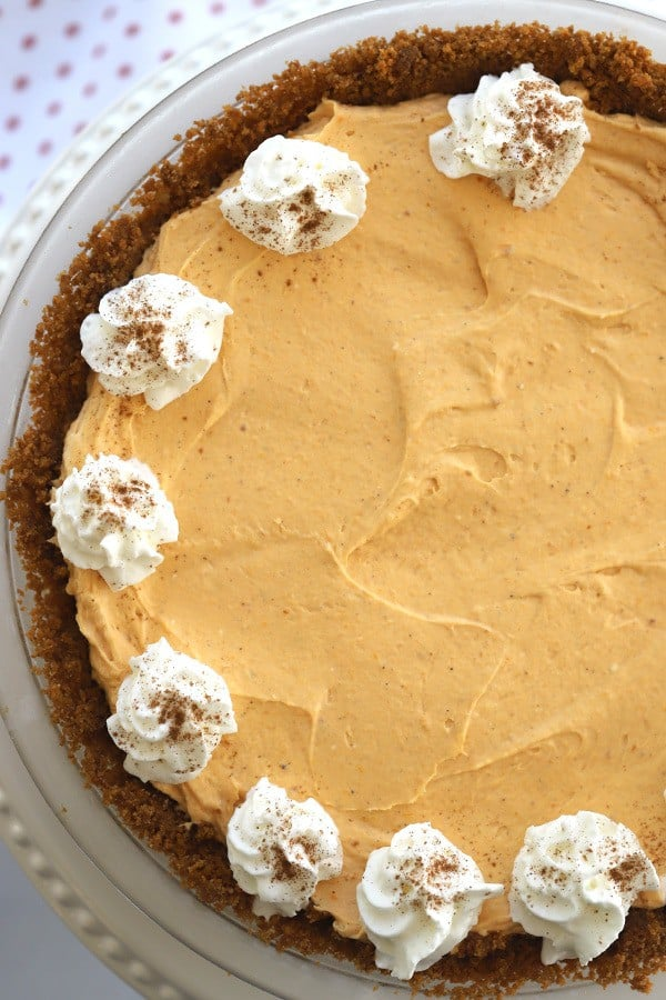 pumpkin cheesecake with whipped cream on top and a gingersnap crust