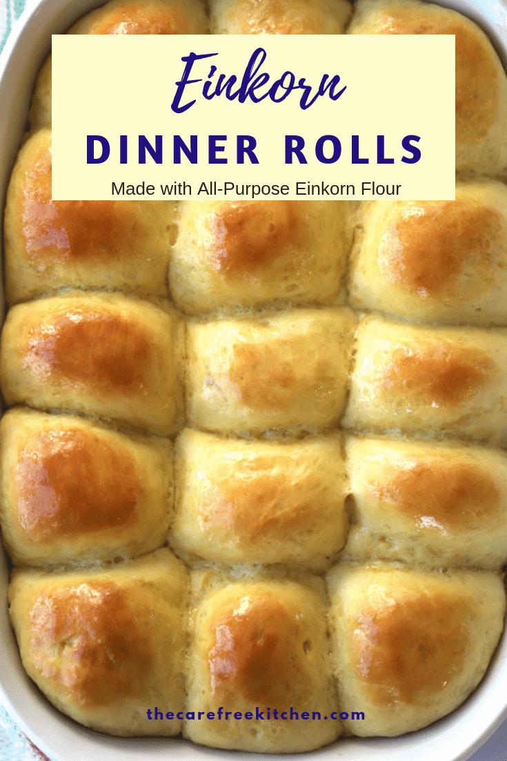 Einkorn Dinner Rolls
