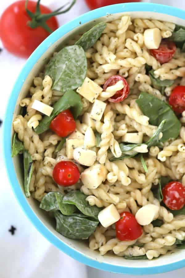 pesto pasta salad with spinach, mozzerella, and tomatoes