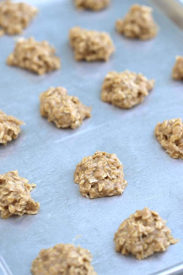 Peanut Butter Coconut No Bakes | no bake peanut butter oatmeal cookies