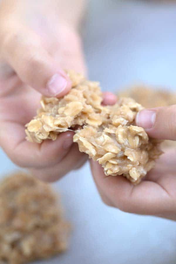 Coconut Peanut Butter No Bake Cookies