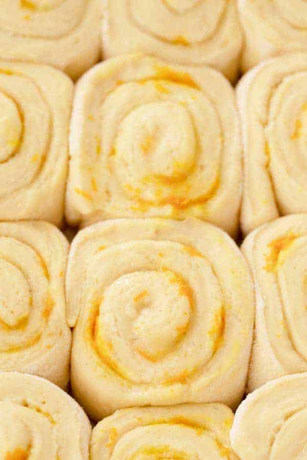 orange sweet rolls rising in a baking dish