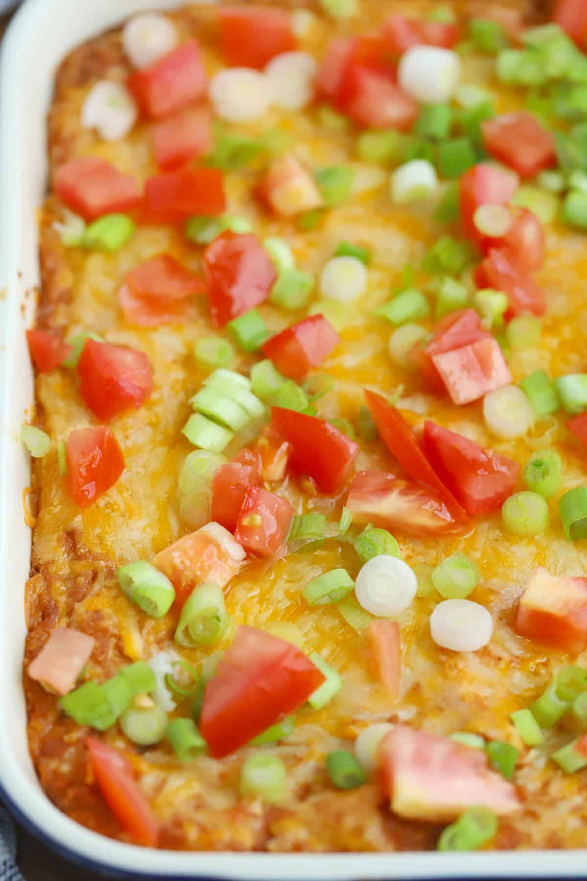 Bean dip baked in a baking dish and topped with tomatoes and green onions.