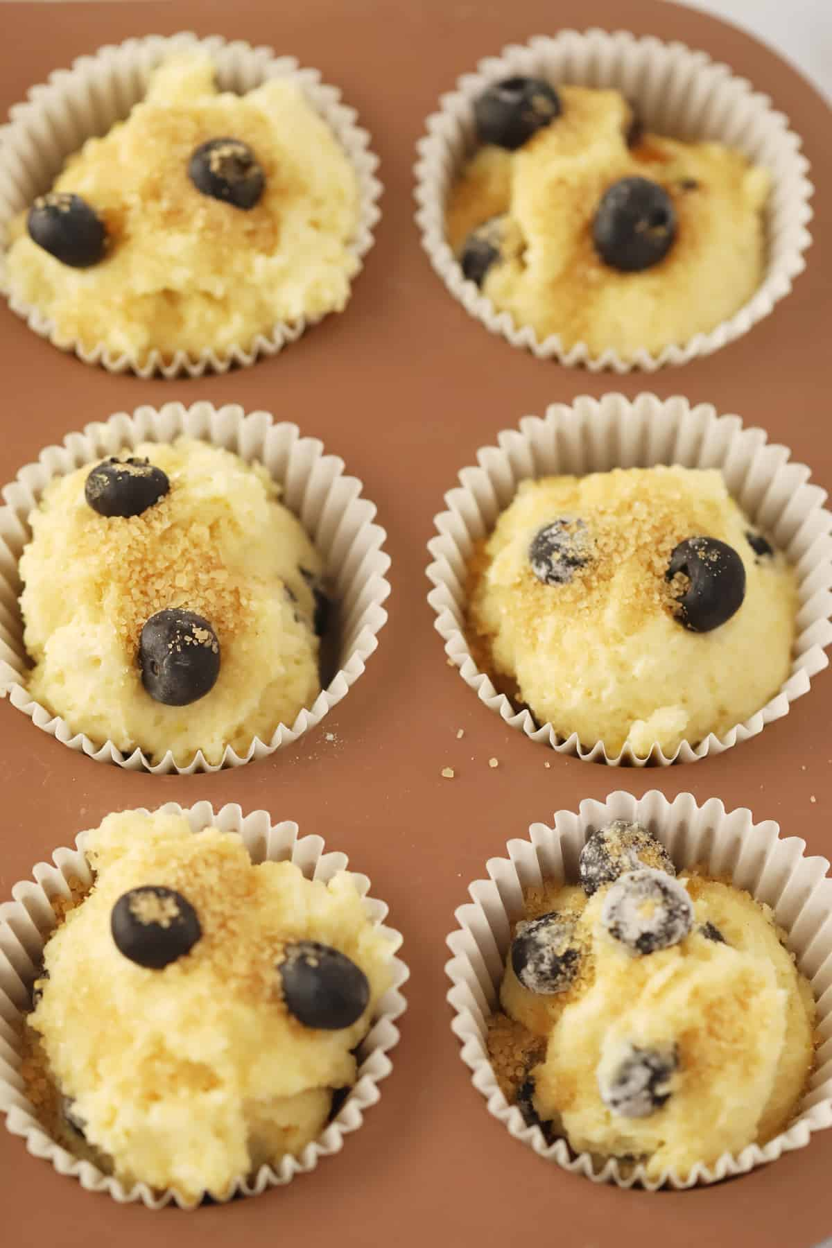 Blueberry muffins topped with coarse sugar ready to bake.