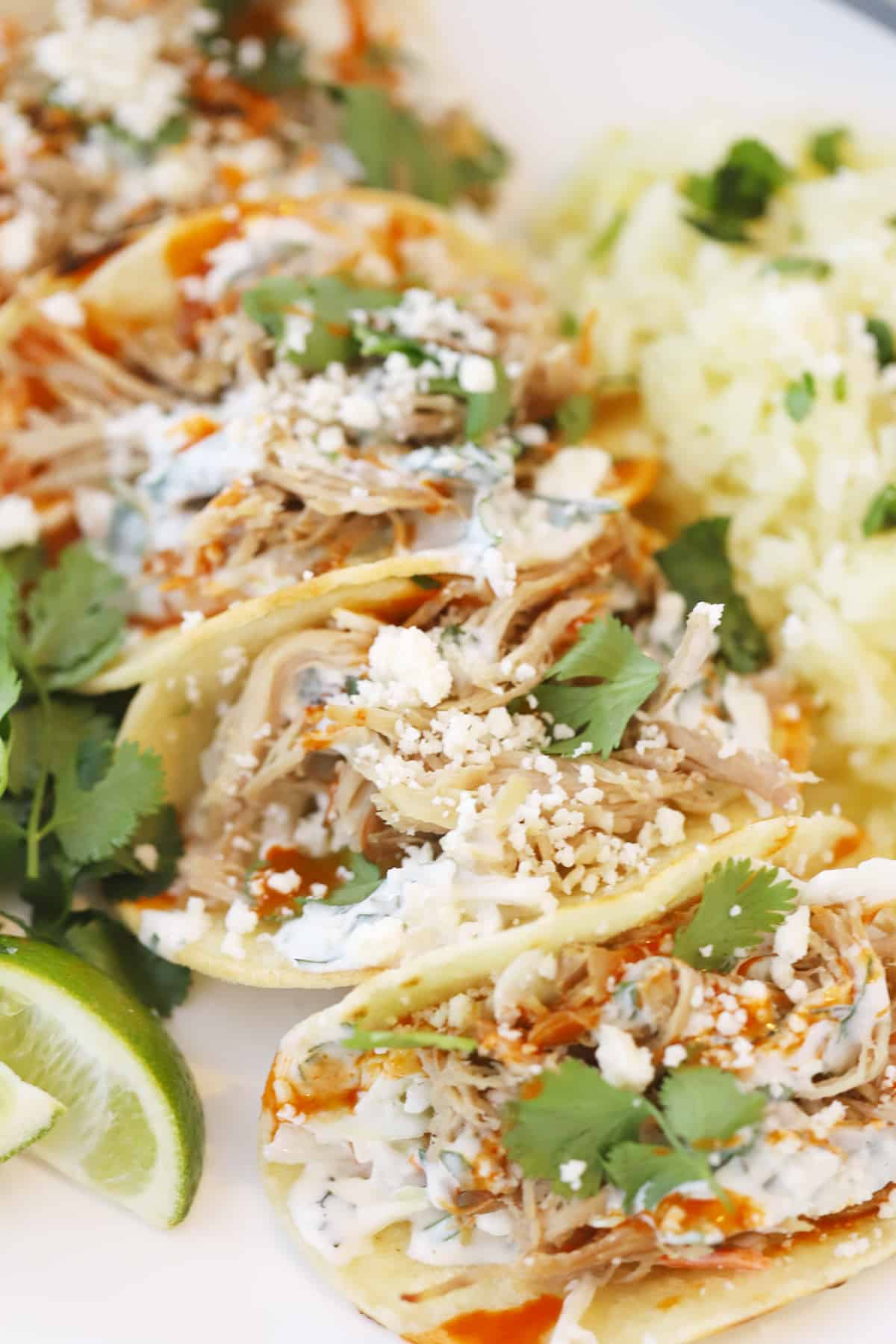 Pork Carnitas Tacos topped with cheese, slaw and fresh cilantro on a platter.
